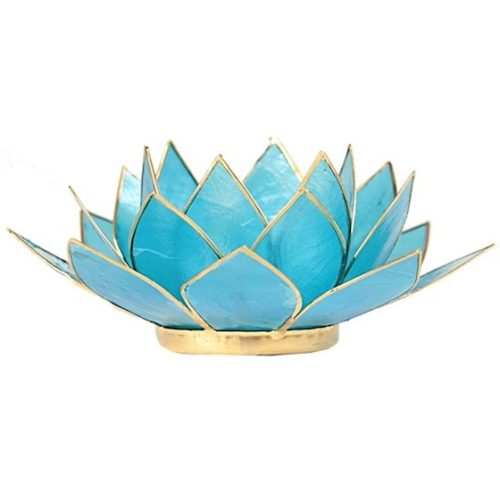 blue lotus light