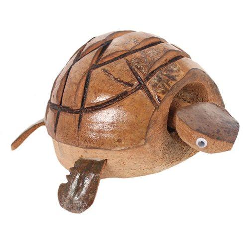 Nodding turtle